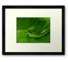 ©GS A Green New Thing  Framed Print