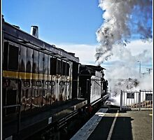 Steam Locomotive in Canberra on its way by Wolf Sverak