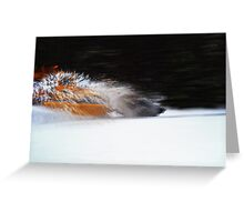 Plow Truck Greeting Card