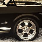 The Mustang by wallarooimages
