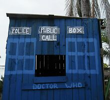 Tardis - Home Made Cubby House  by mandyemblow