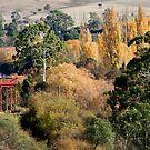 The Water Tower - Bushy Park, Tasmania by clickedbynic