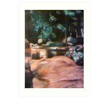 Rainforest rock pond Art Print