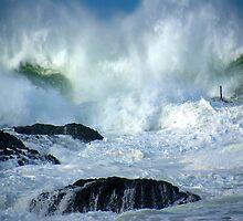 The Peg in wild seas by Karen Eaton