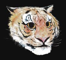 Tiger's Eyes by nonny