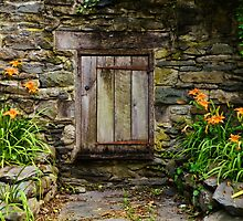 Gomez Mill House Door in the Wall by PineSinger