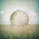 Just stop the time by KarinesPic