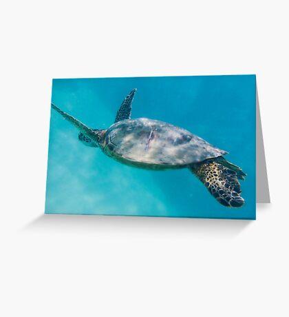 Swimming with Hawaiian Green Sea Turtle Greeting Card