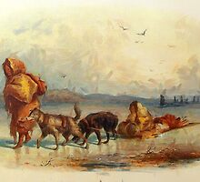 Dog-sledges of the Mandan Indians, North America 19th century by Dennis Melling