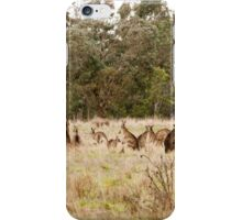 Troop of Kangaroos iPhone Case/Skin