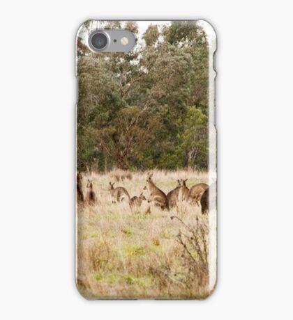 Troop of Kangaroos iPhone Case/Skin