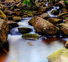 Padley Gorge Burbage Brook by Angie Morton