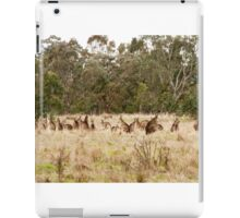 Troop of Kangaroos iPad Case/Skin