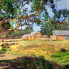 Farm Life II - Mount Barker, South Australia by Mark Richards