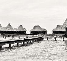 Dhuni Kolhu: A Village Above the Water by Ryan Davison Crisp