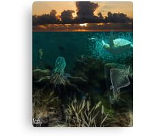 Under the sea... Canvas Print