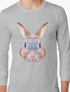 Rabbit Hare Animals Gift Long Sleeve T-Shirt