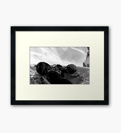 Snowdog in a Snowstorm Framed Print