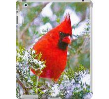 Cardinal in Snowy Evergreen Tree iPad Case/Skin