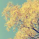 Golden Retro by LittlePhotoHut
