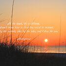 Follow The Sun by ©Dawne M. Dunton