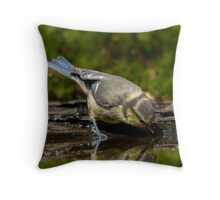 Hey, who are you??? Throw Pillow