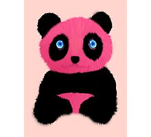 Pink blue-eyed panda Photographic Print