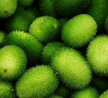 Kiwifruit by ArtCH