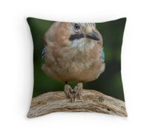 Just sitting here, enjoying the day... Throw Pillow