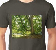 Light catcher Unisex T-Shirt