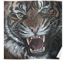 Tigro the Tiger Poster