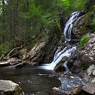 Campbell Falls (upper and lower falls) by Timothy Borkowski