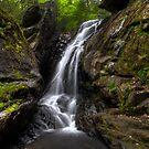 Campbell Falls (upper falls - horizontal) by Timothy Borkowski