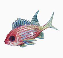 Squirlie - Ocean Series Tropical Fish Kids Tee