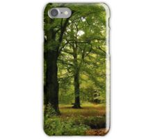 Golden-green cathedrals... iPhone Case/Skin