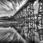 Trestle in Mono by Shari Mattox