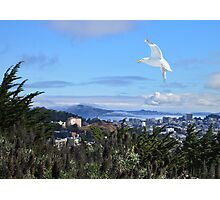 San Francisco from Diamond Heights Photographic Print