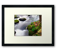 Ten Dollar Zen  Framed Print
