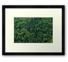 Nature Pattern on Palms Framed Print