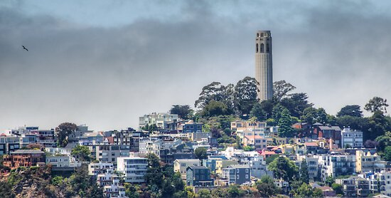 Coit Tower by Diego  Re