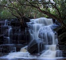 Out of the rain_Somersby Falls by Sharon Kavanagh