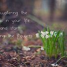 stop watering the weeds in your life and start watering the flowers by netza