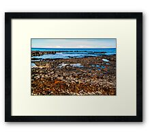 The Seaweed Line. Framed Print