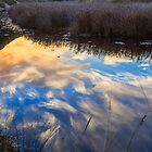 Creek Reflections by fotosic