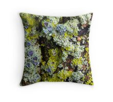 Lichens on a Tree Throw Pillow