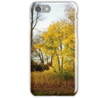 """""""As we let our own light shine..."""" - Little yellow tree iPhone Case/Skin"""