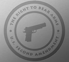 The Right To Bear Arms by morningdance