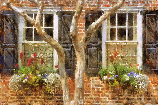 Flower-Filled Window Boxes on Tradd St - Charleston SC by JHRphotoART