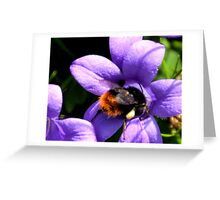 Saddlebags Full Greeting Card