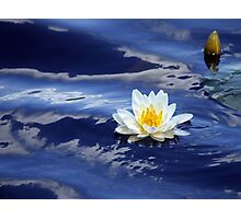 Water Lily and Moving Water Photographic Print